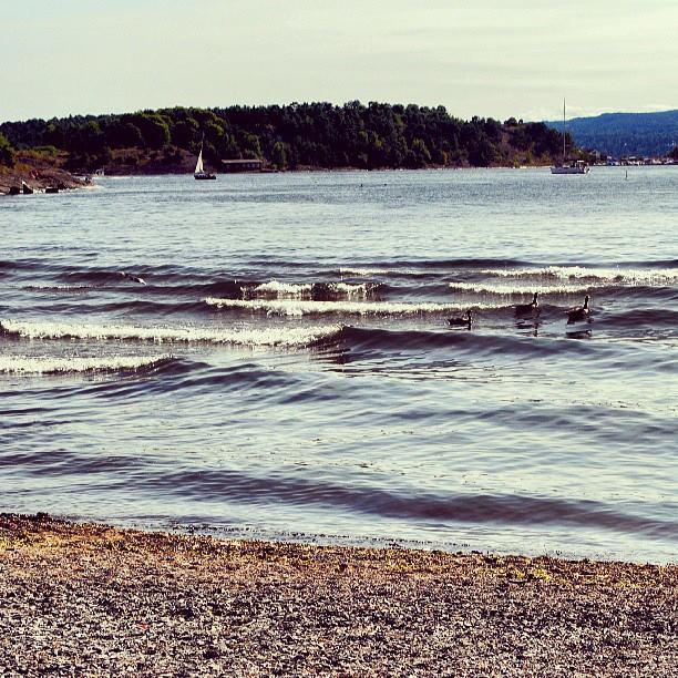 Oslo im Sommer: Simply fabelhaft!