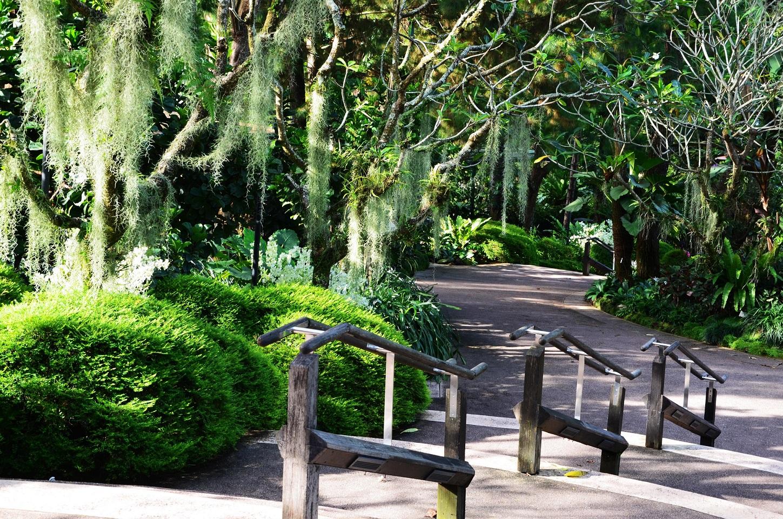 Träumen erlaubt im Botanischen Garten