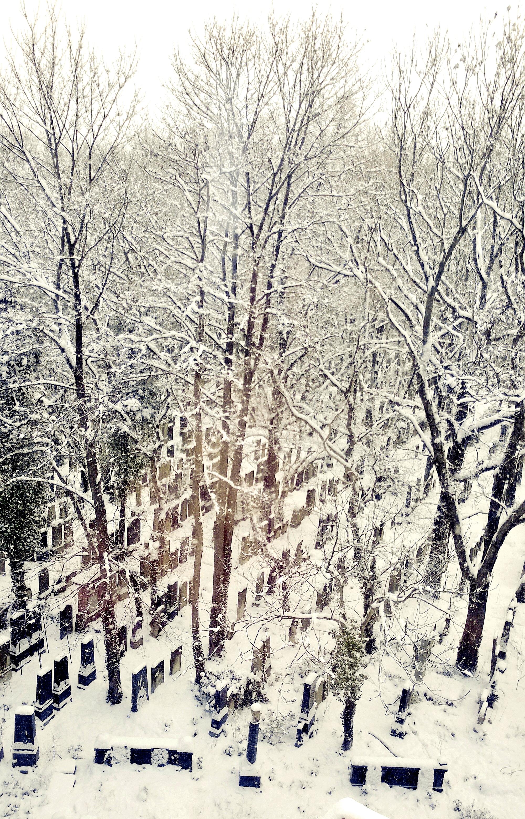 Nichts als Schnee und Frieden